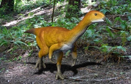 The Terrifying T Rex Dinosaur Had A Vegetarian Cousin